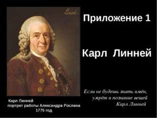 Приложение 1 Карл Линней Карл Линней портрет работы Александра Рослина 1775 г
