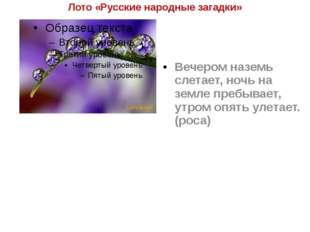 Лото «Русские народные загадки» Вечером наземь слетает, ночь на земле пребыва