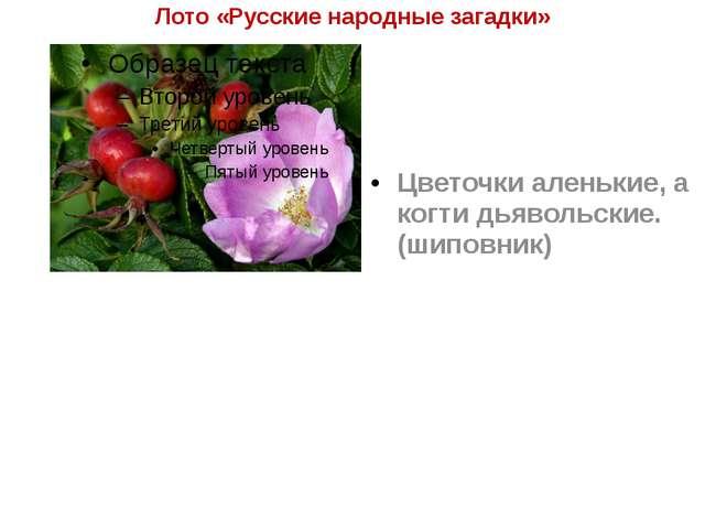 Лото «Русские народные загадки» Цветочки аленькие, а когти дьявольские. (шипо...