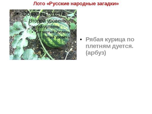 Лото «Русские народные загадки» Рябая курица по плетням дуется. (арбуз)
