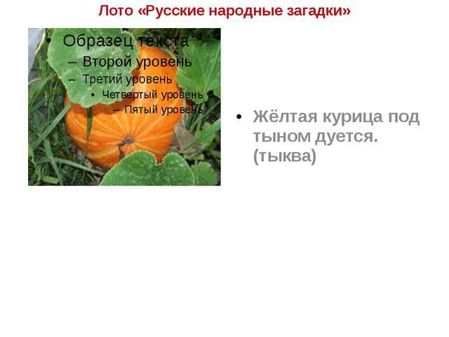 Лото «Русские народные загадки» Жёлтая курица под тыном дуется. (тыква)