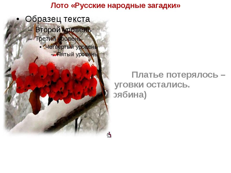 Лото «Русские народные загадки» Платье потерялось – пуговки остались. (ряби...