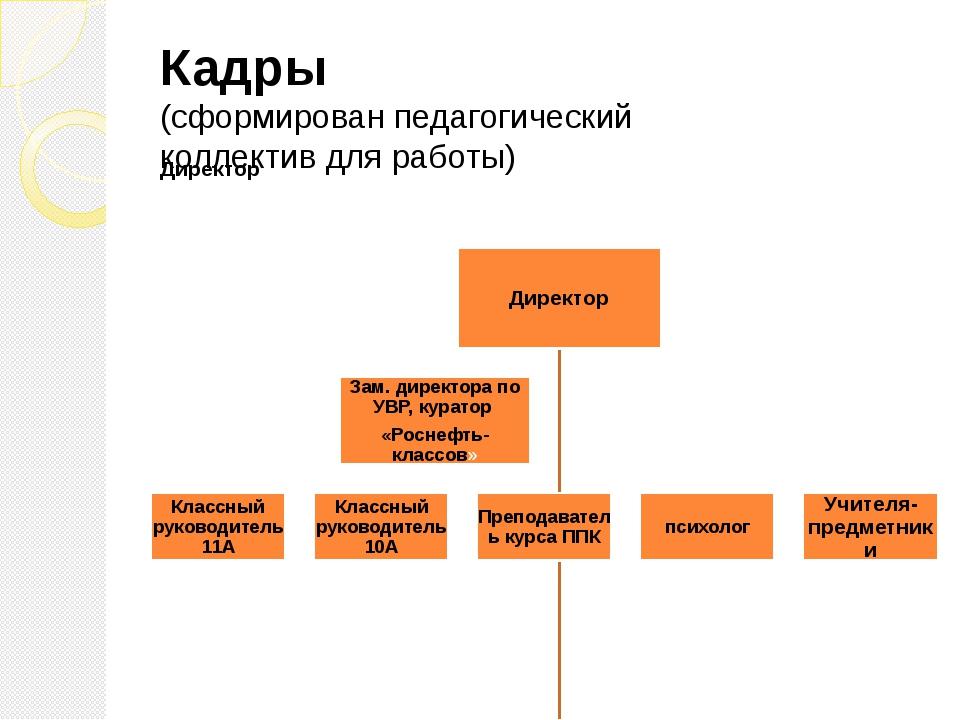 Кадры (сформирован педагогический коллектив для работы)