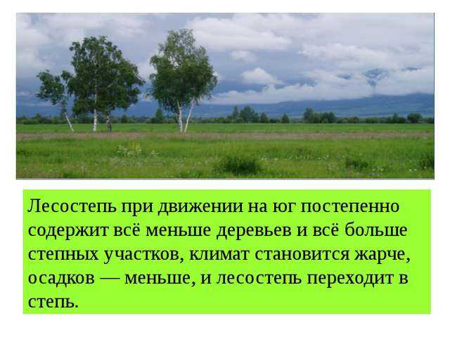 Лесостепь при движении на юг постепенно содержит всё меньше деревьев и всё бо...