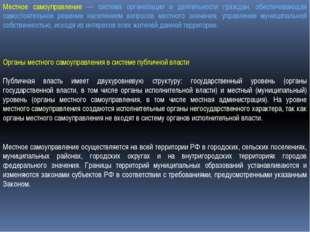 Органы местного самоуправления в системе публичной власти Публичная власть и