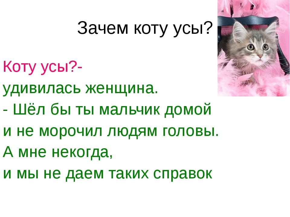 Зачем коту усы? Коту усы?- удивилась женщина. - Шёл бы ты мальчик домой и не...