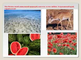 Мы богаты своей уникальной природой, нам есть за что любить Астраханский край