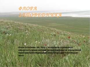 ФЛОРА ЗАПОВЕДНИКА Флора (в ботанике, лат. flora) — исторически сложившаяся со