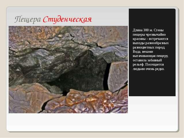 Пещера Студенческая Длина 300 м. Стены пещеры чрезвычайно красивы – встречают...