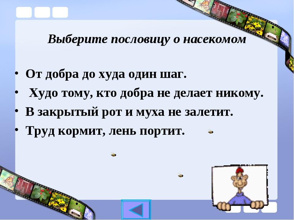 Достопримечательности и развлечения в Новомихайловском