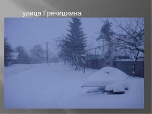 улица Гречишкина