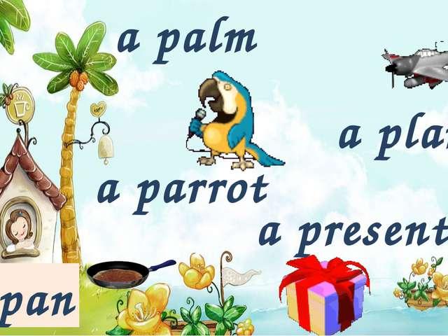 a palm a present a plane a pan a parrot