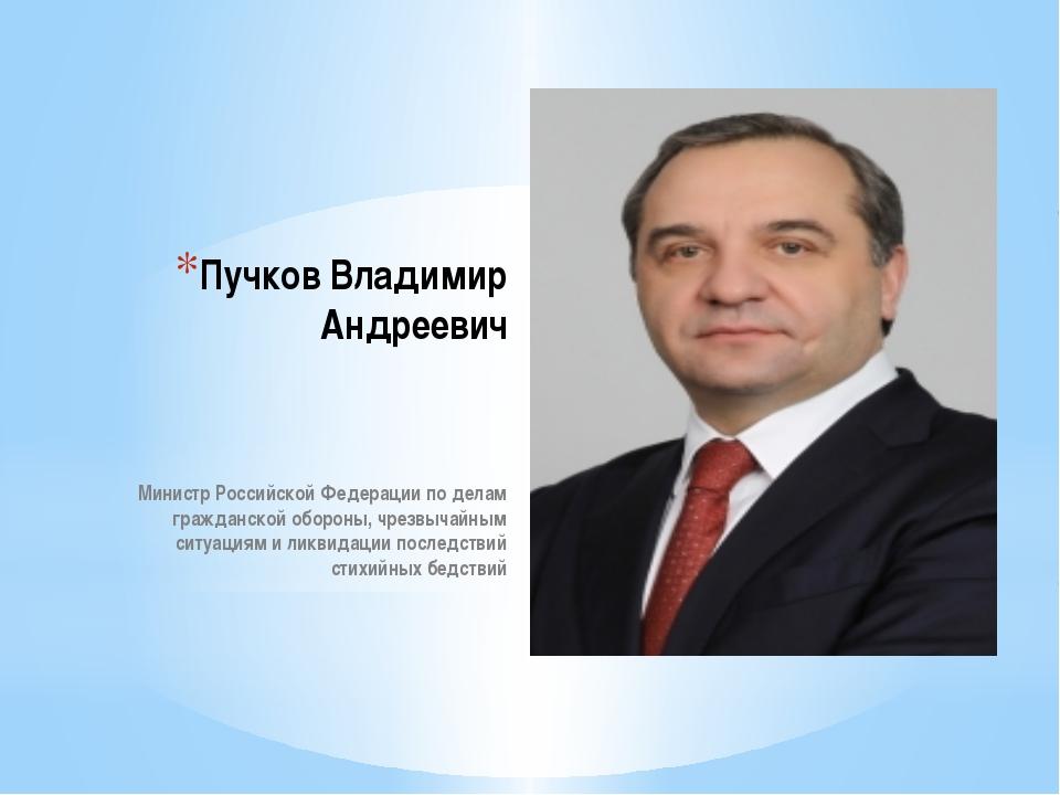 Пучков Владимир Андреевич Министр Российской Федерации по делам гражданской о...
