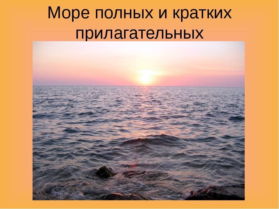 Море полных и кратких прилагательных