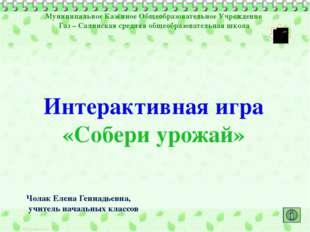 Муниципальное Казённое Общеобразовательное Учреждение Газ – Салинская средняя