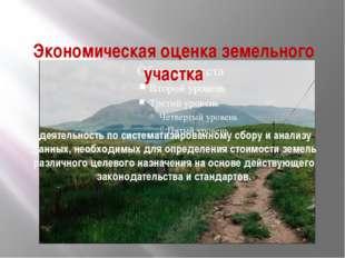 Экономическая оценка земельного участка деятельность по систематизированному