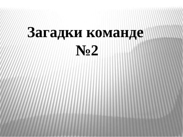Загадки команде №2
