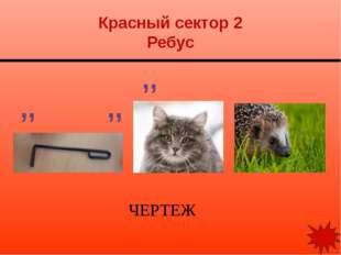 Красный сектор 3 Ребус РЕЗЬБА ,, , ,, ,,,