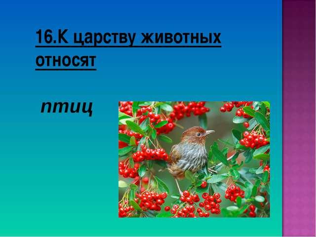 16.К царству животных относят птиц