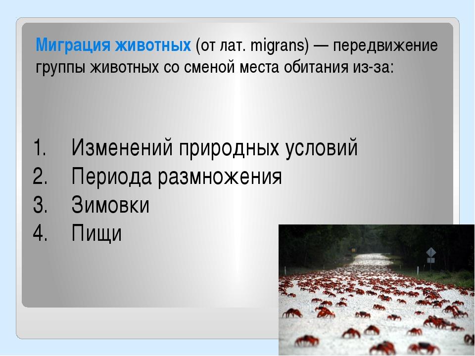 Миграция животных (от лат. migrans) — передвижение группы животных со сменой...