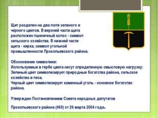 Щит разделен на два поля зеленого и черного цветов. В верхней части щита расп