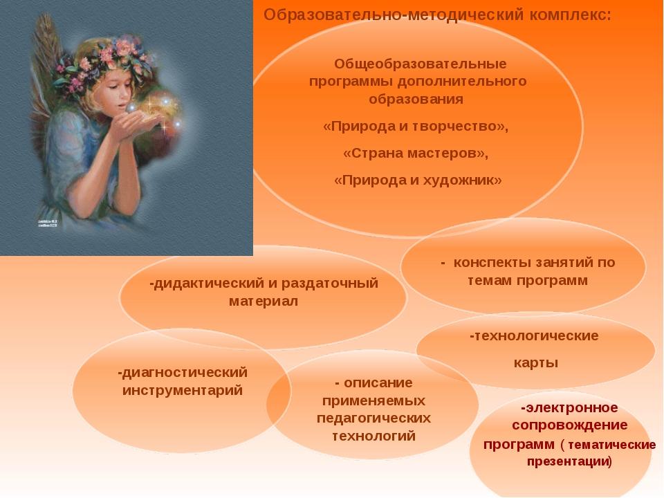 Образовательно-методический комплекс: Общеобразовательные программы дополните...