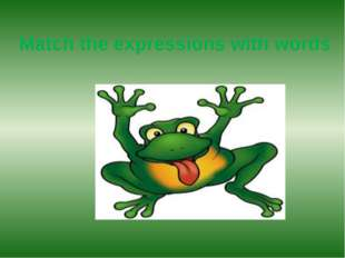 Match the expressions with words