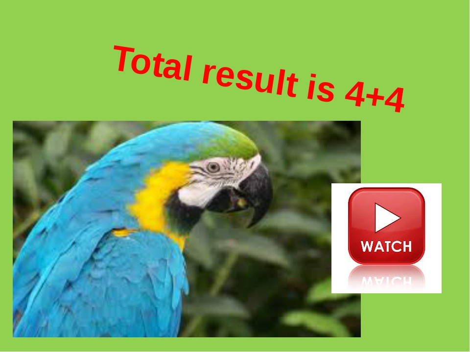 Total result is 4+4