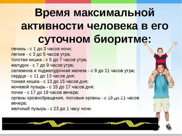 Время максимальной активности человека в его суточном биоритме: печень - с 1...