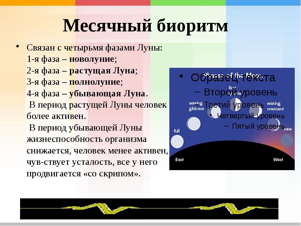 Месячный биоритм Связан счетырьмя фазами Луны: 1-я фаза – новолуние; 2-я фаз...