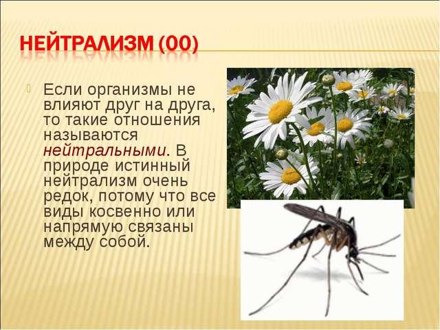 Если организмы не влияют друг на друга, то такие отношения называются нейтрал...