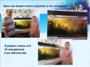 (созданная человеком) Здесь вы видите моего дедушку и его аквариум: Я решил