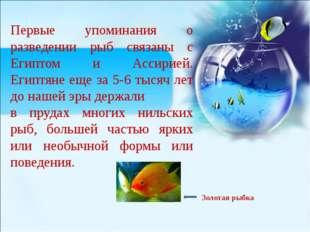 Первые упоминания о разведении рыб связаны с Египтом и Ассирией. Египтяне ещ