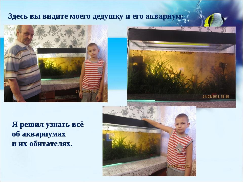 (созданная человеком) Здесь вы видите моего дедушку и его аквариум: Я решил...