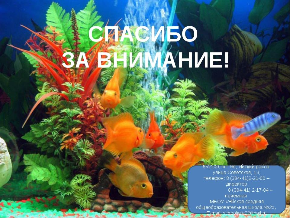 СПАСИБО ЗА ВНИМАНИЕ! 652100, пгт Яя, Яйский район, улица Советская, 13, телеф...