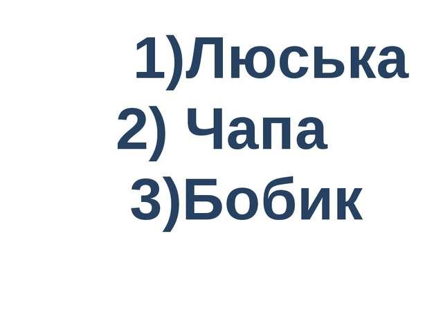 1)Люська 2) Чапа 3)Бобик