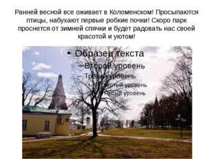 Ранней весной все оживает в Коломенском! Просыпаются птицы, набухают первые р