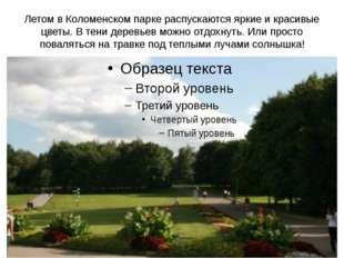 Летом в Коломенском парке распускаются яркие и красивые цветы. В тени деревье