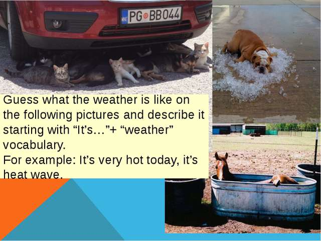 Guess what the weather is like on the following pictures and describe it star...