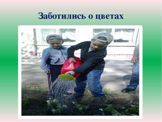 Заботились о цветах