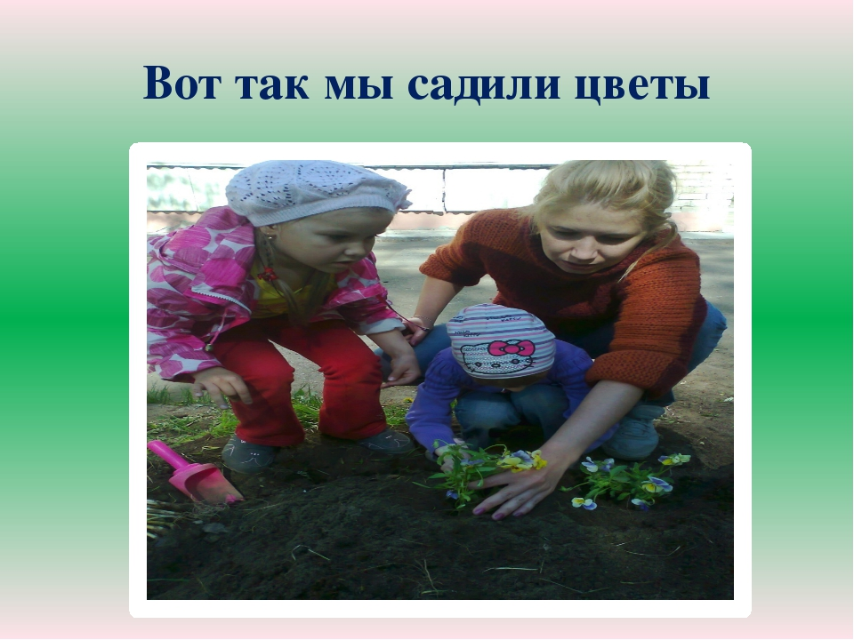 Вот так мы садили цветы