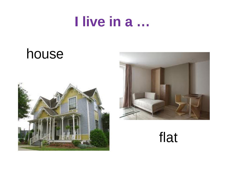 I live in a … house flat