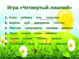 Клен рябина ель тюльпан Береза дуб шиповник тополь Яблоня смородина малина ря