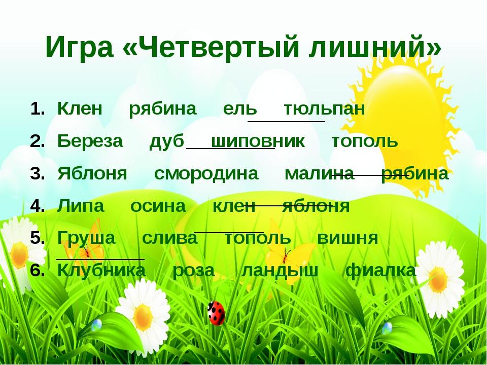 Клен рябина ель тюльпан Береза дуб шиповник тополь Яблоня смородина малина ря...