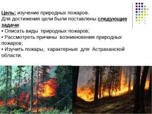 Цель: изучение природных пожаров. Для достижения цели были поставлены следую