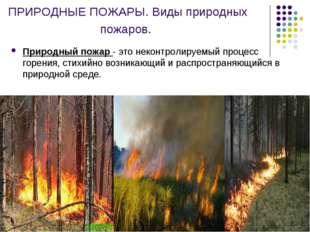 ПРИРОДНЫЕ ПОЖАРЫ. Виды природных пожаров. Природный пожар - это неконтролируе