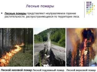 Лесные пожары Лесные пожары представляют неуправляемое горение растительности