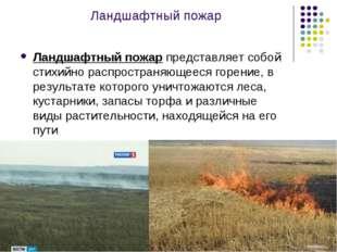 Ландшафтный пожар Ландшафтный пожар представляет собой стихийно распространяю