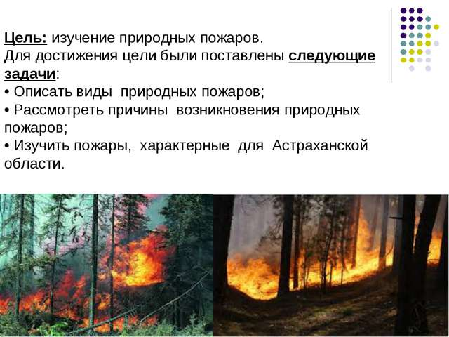 Цель: изучение природных пожаров. Для достижения цели были поставлены следую...