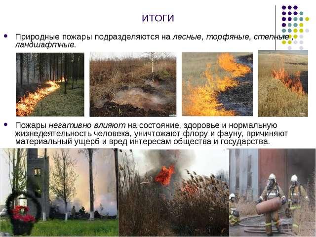 ИТОГИ Природные пожары подразделяются на лесные, торфяные, степные , ландшафт...